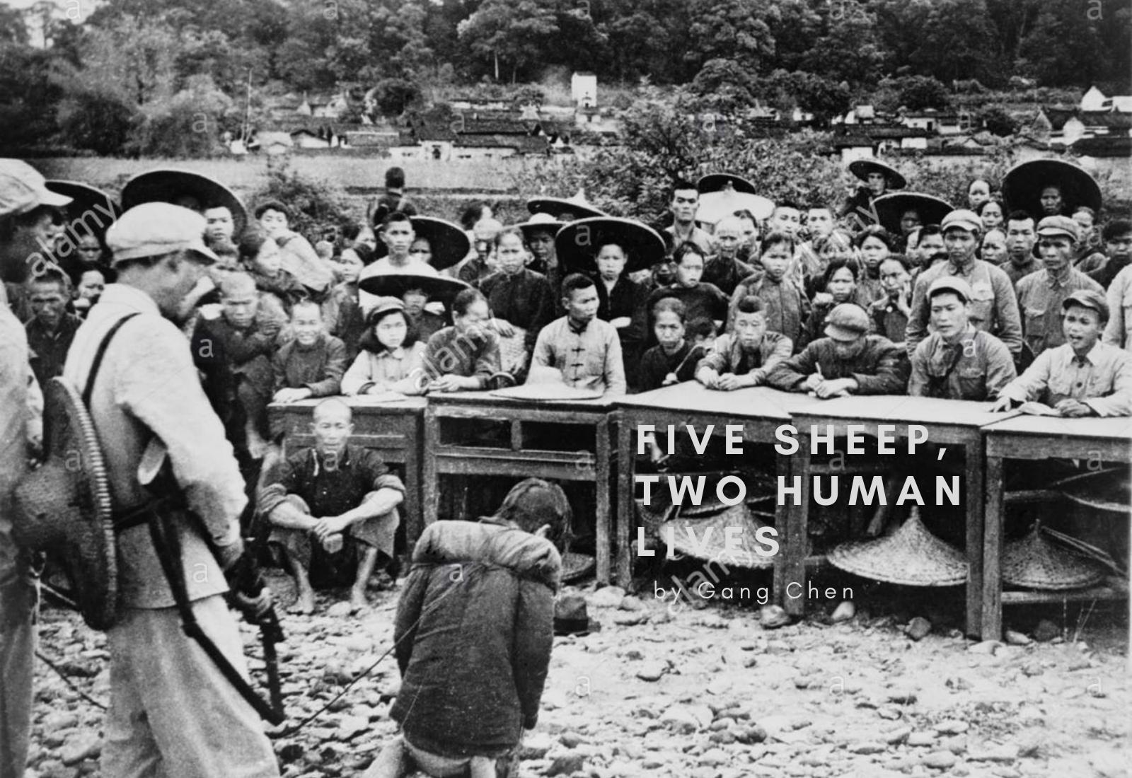 FIVE SHEEP, TWO HUMAN LIVES (China)by Gang Chen
